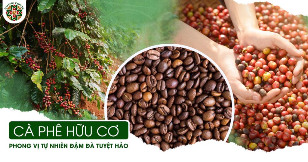 Cà phê hữu cơ và các tiêu chí đánh giá, nhận biết