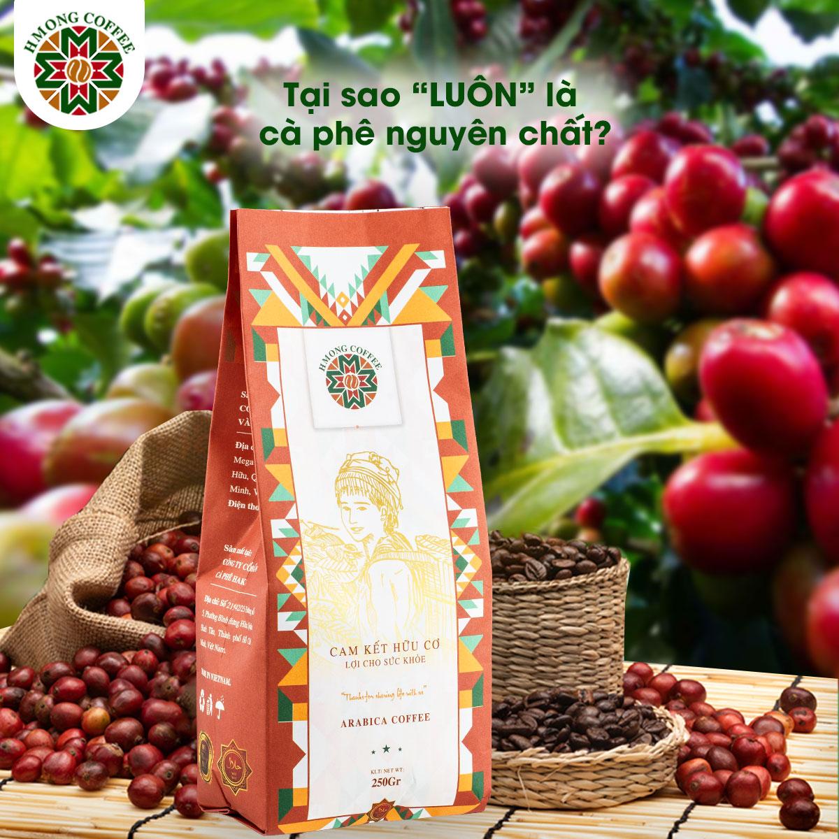 Cà phê hữu cơ mang đến giá trị đích thực cho những người yêu thích chúng bởi hương vị chuẩn sạch