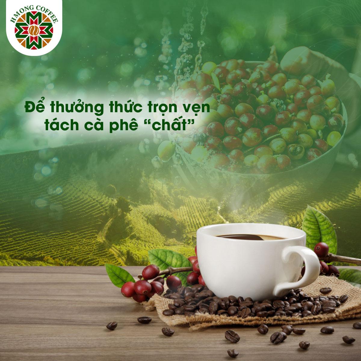 Cà phê ngon luôn chất chứa những giá trị tuyệt vời