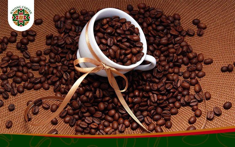 Bí mật về dòng cafe Robusta
