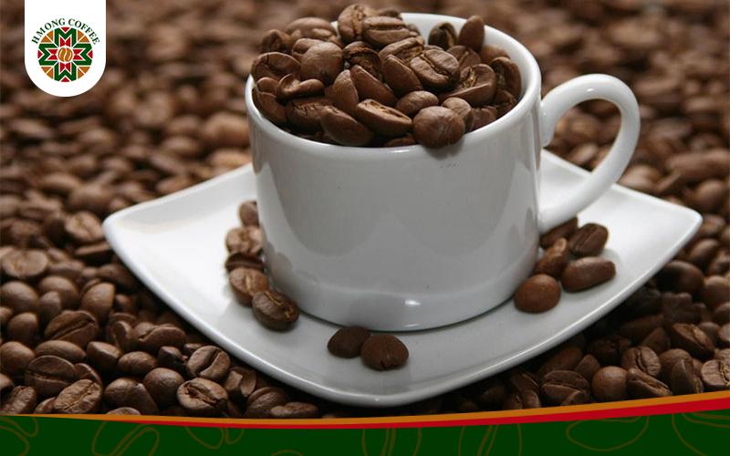Cafe Arabica là gì